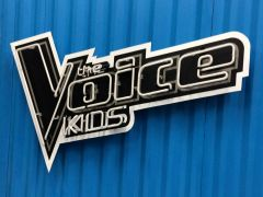 The Voice Kids 2017