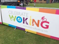 Woking Party in the Park 2014 - 2018